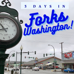 Forks Washington Forks WA Twilight